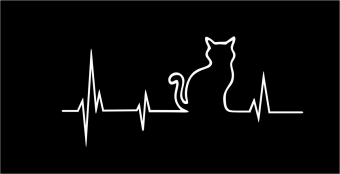 Heartbeat poes